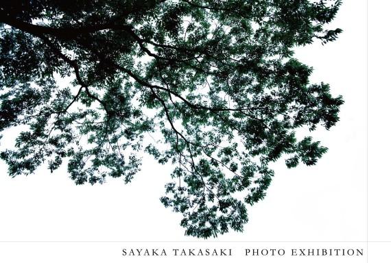 DMtakasakisayaka_egara